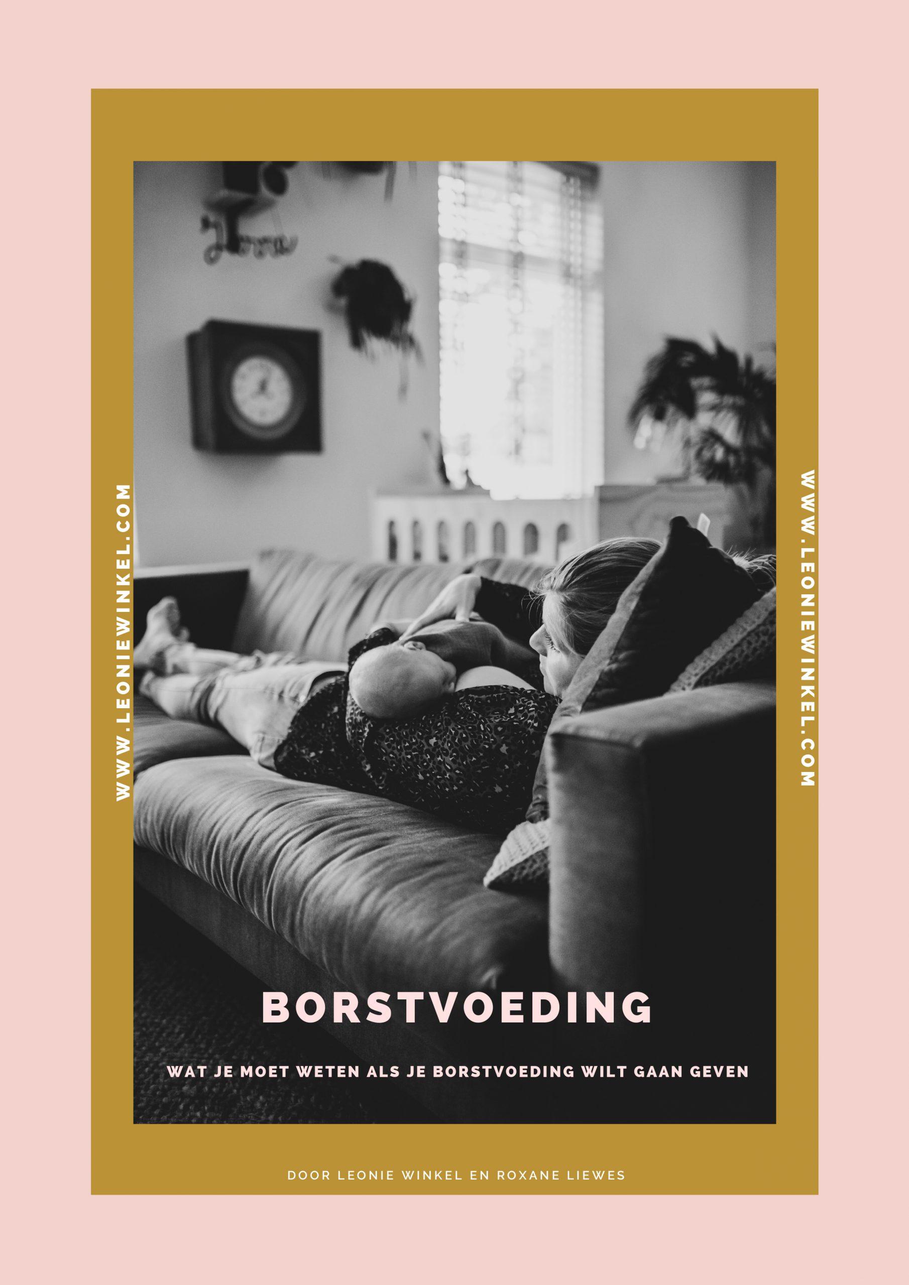 e-book borstvoeding